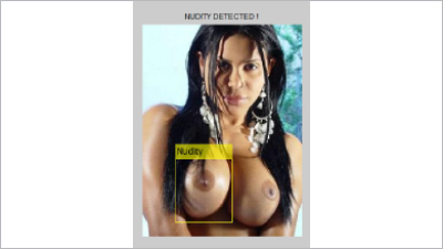 Nudity Detection